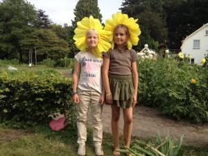 Theaterweek Kraaybeekerhof - de zonnebloemen